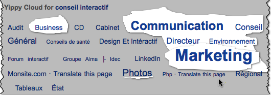 conseil-internet-web-service-interactif